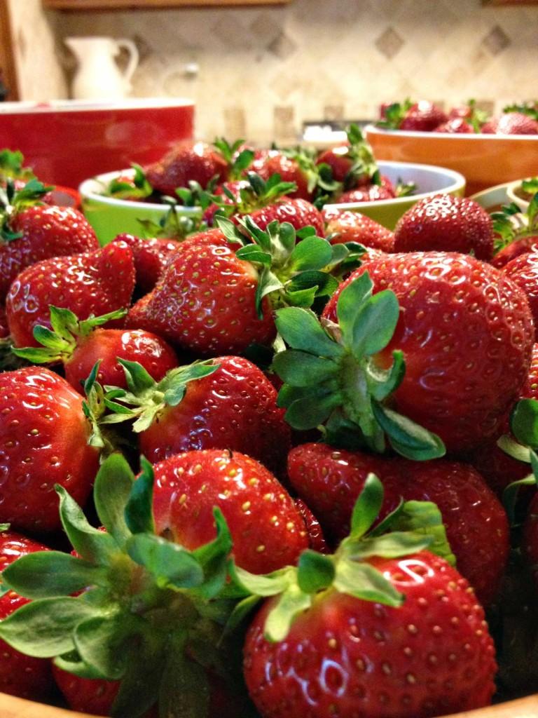 Georgia strawberries