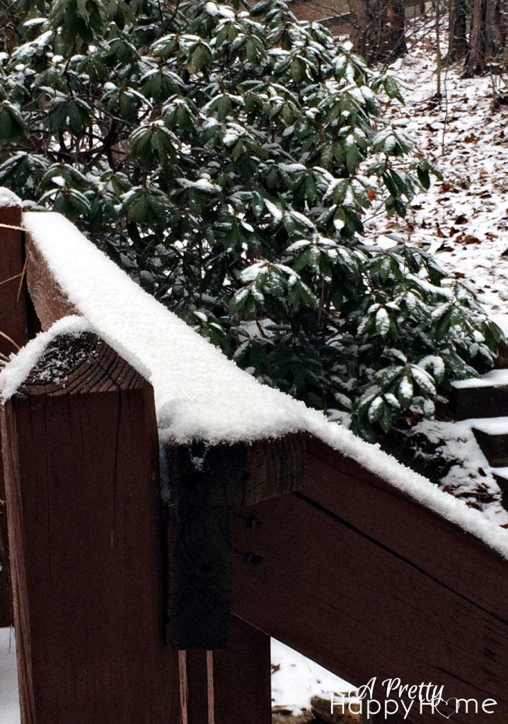 snowday2015_2