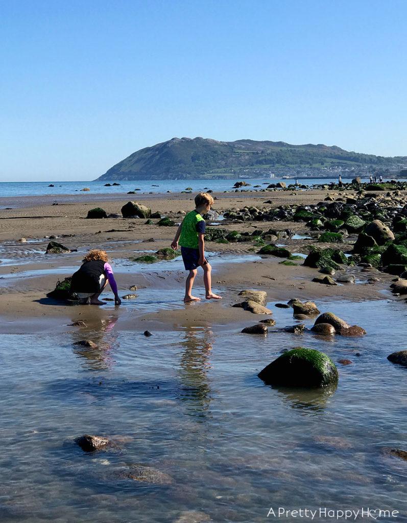 low tide irish sea on the happy list halcyon