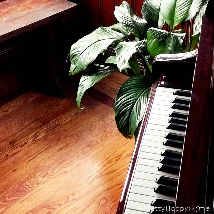 11 Things to Know Before Hiring a Piano Moving and Storage Company