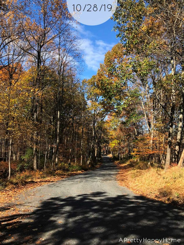 fall colors in new jersey october 28 2019