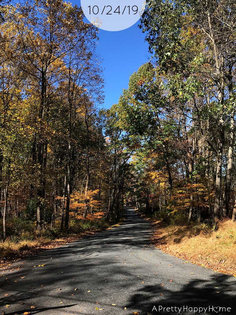 fall colors in new jersey october 24 2019