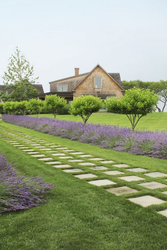 lavender path via house beautiful on the happy list