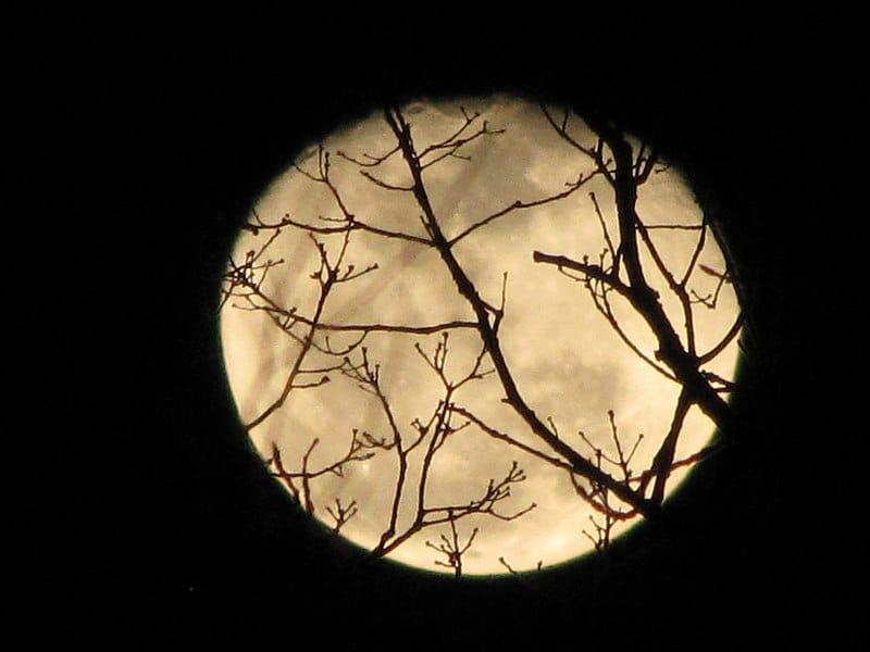 hallowed moon via wikimedia on the happy list