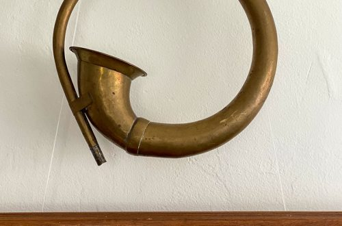 collecting antique car horns