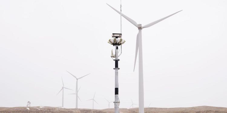 identiflight wind turbine cameras on the happy list