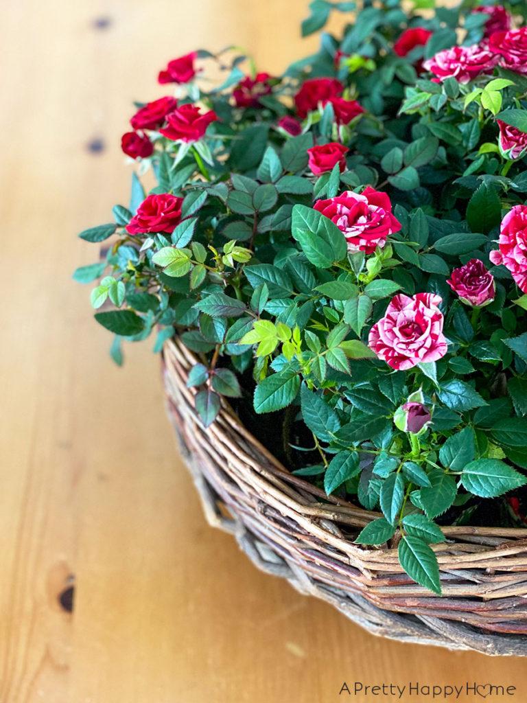 flower basket centerpiece