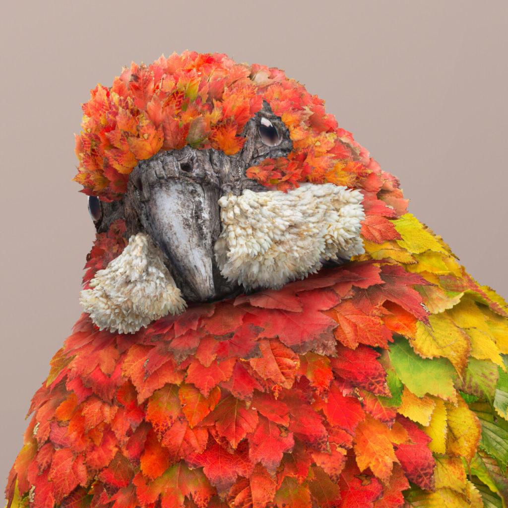"Detail of ""Burooli"" by Melbourne-based artist Josh Dykgraaf on the happy list"