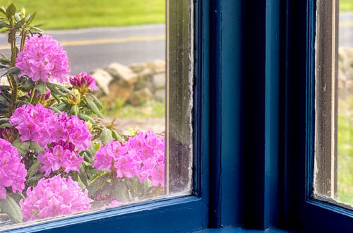 rhododendron outside blue sunporch