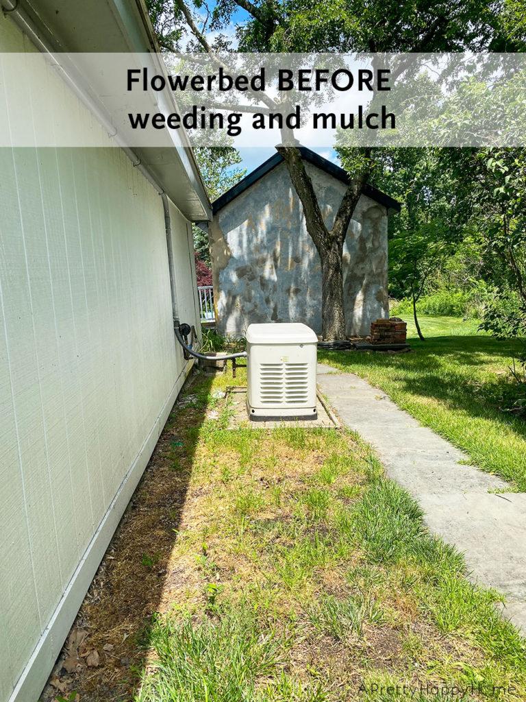 flowerbed before weeding outdoor project progress