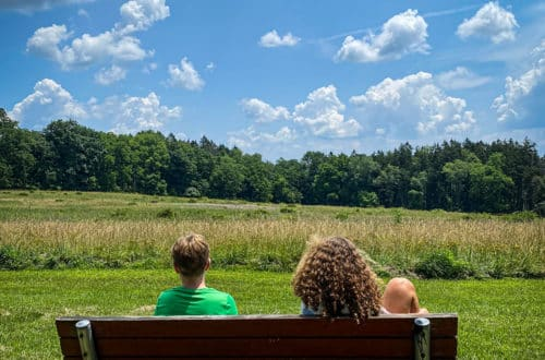 kids sitting on a bench with a view