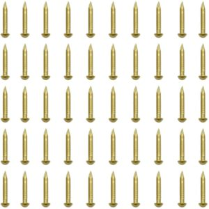 rounded brass nails amazon