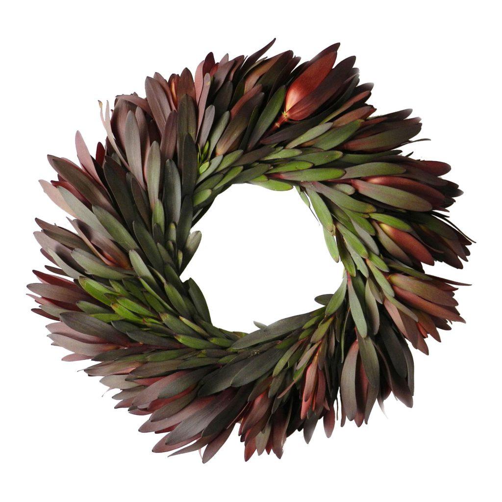 world market fresh safari sunset leucadendron wreath fall wreath 13 Fall Wreaths