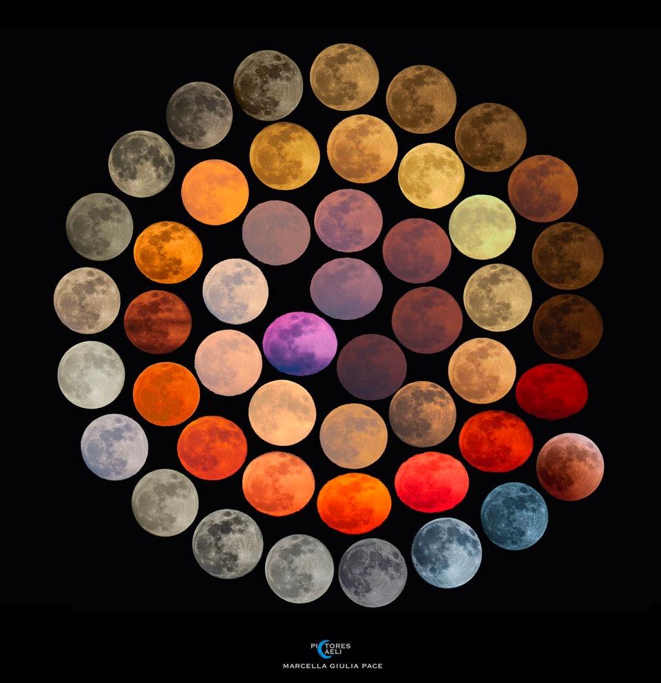 marcella giulia pace full moon colors fine art america on the happy list